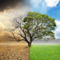 El cambio climático exige acción y España ya dio su primer paso