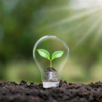 Sostenibilidad y salud, claves de la OCDE para la recuperación