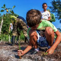 Cuba se alía con la naturaleza para vencer al cambio climático
