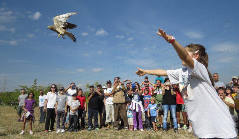 La colaboración es una apuesta segura para proteger la biodiversidad