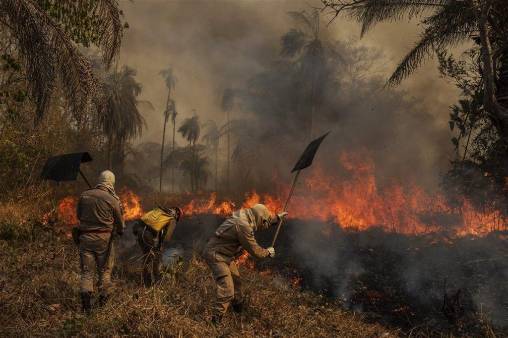 Pantanal en llamas | Foto: Lalo de Almeida