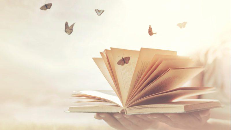 ¿Sabías que se puede producir papel sin usar ningún árbol?
