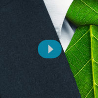 Convierte tu oficina en un espacio de trabajo sostenible