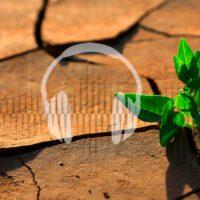Una ley deshidratada contra el cambio climático