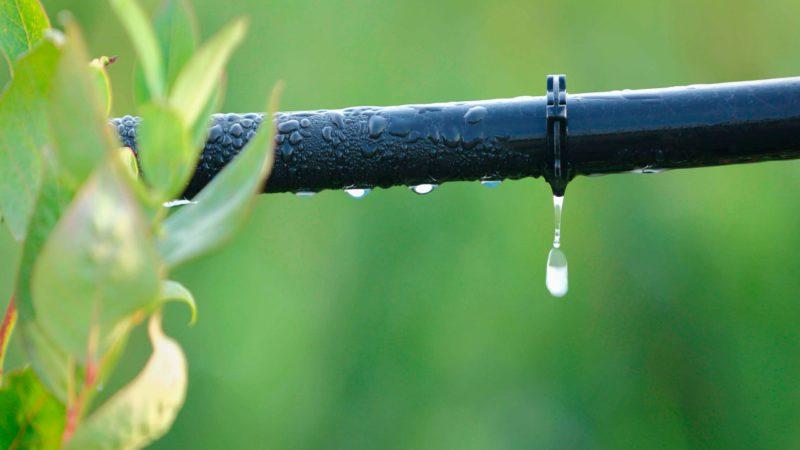 Los agricultores defienden su buena gestión del agua
