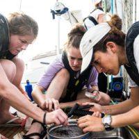 Exxpedition: Exploración científica en femenino