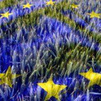 Acuerdo político sobre la nueva PAC: más justa, más ecológica, más flexible
