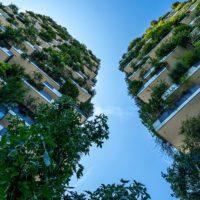 Arquitectura verde para cuidar el medio ambiente
