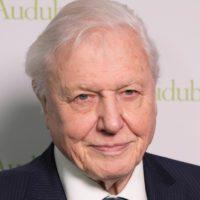 David Attenborough será el Defensor del Pueblo de la COP26