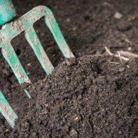 Compost artesano para generar empleo y enriquecer el suelo