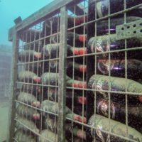 Envejecer vinos bajo el mar, una técnica con enorme potencial