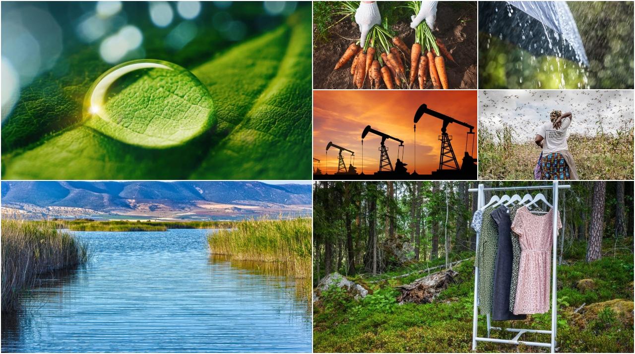 Sostenibilidad, agua y comunicación, una alianza clave para el Medio Ambiente