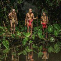 Indígenas, los guardianes olvidados de la naturaleza