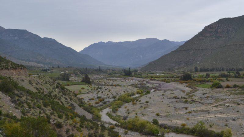 El clima obliga a la agricultura del Valle del Aconcagua a adaptarse