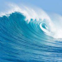 El agua tarda 2.800 años en visitar todos los rincones de los océanos