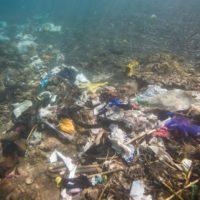 Los plásticos representan el 80% de la basura marina mundial