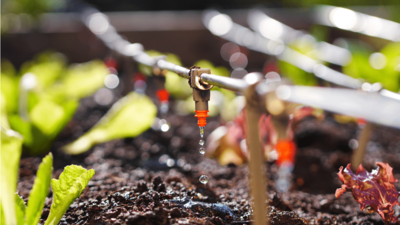 El intercambio de datos meteorológicos mejorará el uso del agua