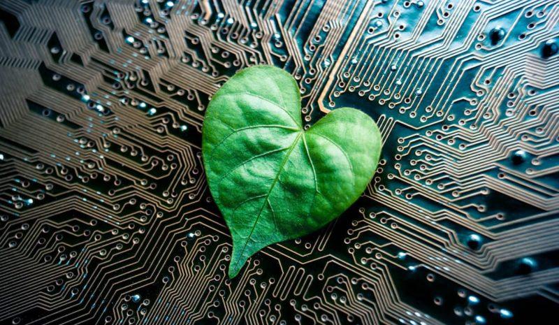 'Call for Code': combatir el cambio climático con tecnología
