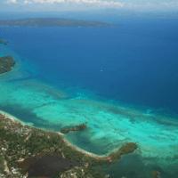 Proteger los trópicos es vital para la biodiversidad mundial