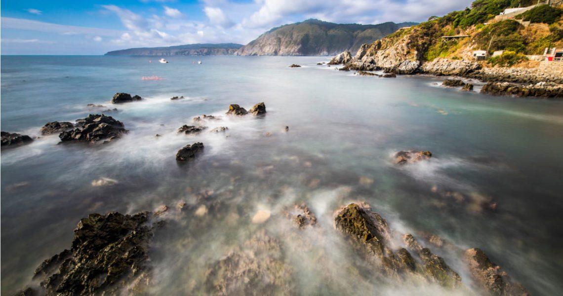 Pescadores y científicos chilenos recuperan juntos especies marinas