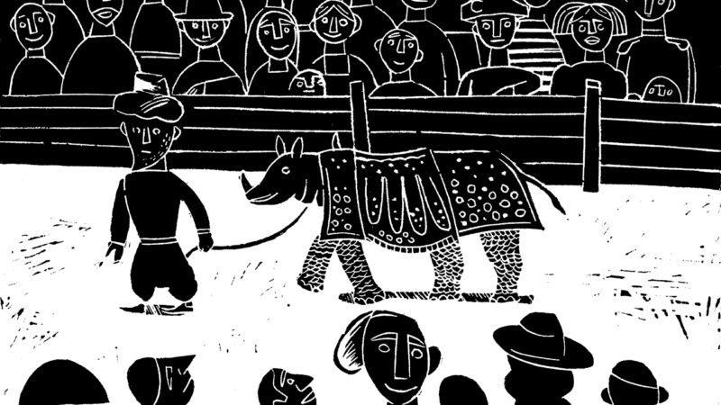 ¿Qué fue del desdichado rinoceronte de la corte que inspiró a Durero?