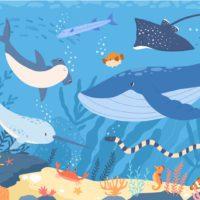 Animales marinos en peligro de extinción, ¿qué sabes sobre ellos?