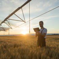 Invertir en innovación agrícola, clave para eliminar el hambre