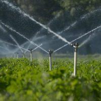 Inteligencia artificial para prever el agua que usarán los regantes