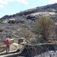 Repararán las captaciones de agua afectadas por el incendio de Navalacruz