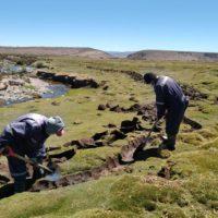 Técnicas ancestrales restauran los bofedales de Chile