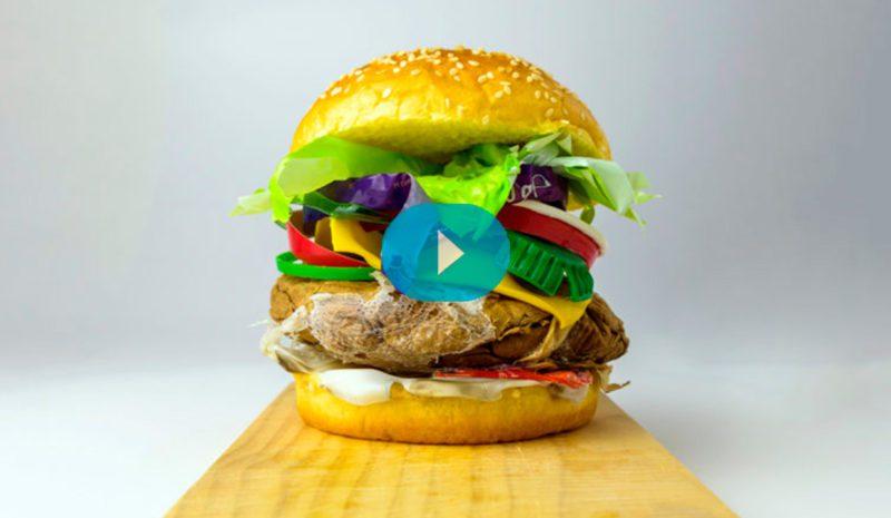 La '<em>fast food</em>' también es mala para el medio ambiente