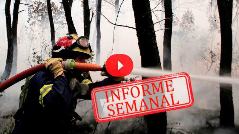 Los incendios devoran el Mediterráneo oriental
