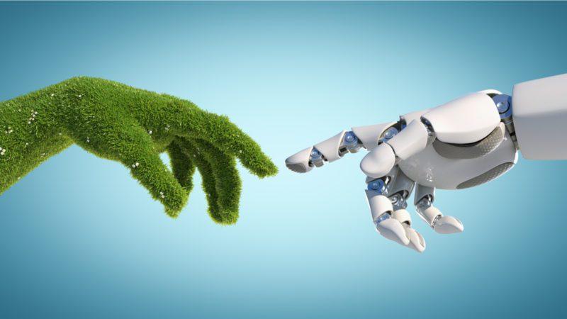 'Coexist Land': inteligencia artificial para repensar la protección de la naturaleza