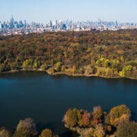 Prospect Park: el corazón autogestionado de Brooklyn