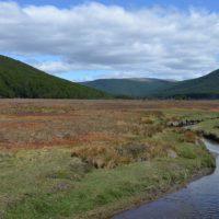 Parque Karukinka en Tierra del Fuego, un secreto en el extremo sur del mundo