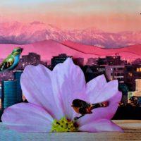 Cortometrajes ciudadanos para celebrar un río Mapocho limpio