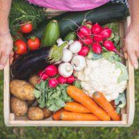 El futuro de los sistemas alimentarios se decide en la gran cumbre de la ONU