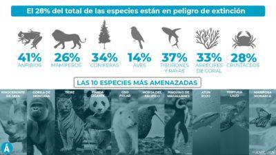 La lista de animales en peligro de extinción crece cada año