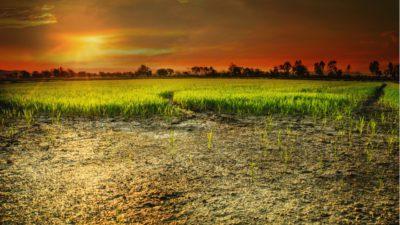 Recetas latinoamericanas para la gestión de sequías e inundaciones