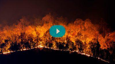 ¿Qué podemos hacer frente a los incendios?