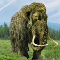 La increíble resurrección del mamut lanudo