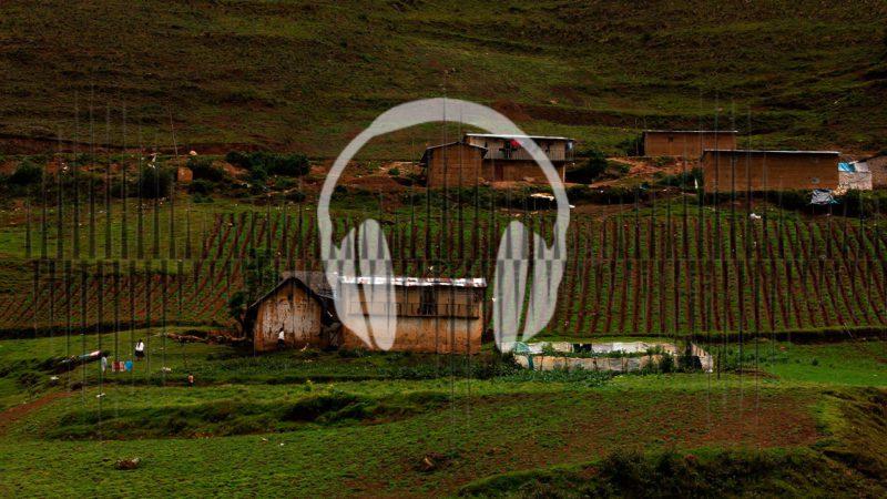 El ámbito rural, clave para abanderar la sostenibilidad en Latinoamérica