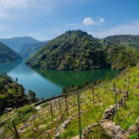 Ribeira Sacra, entre las 20 nuevas Reservas de la Biosfera de la Unesco