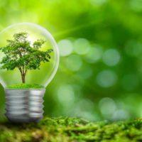 Ribera defiende la importancia de las soluciones basadas en la naturaleza