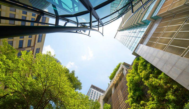 Día Mundial del Hábitat: ciudades como núcleos de recuperación verde