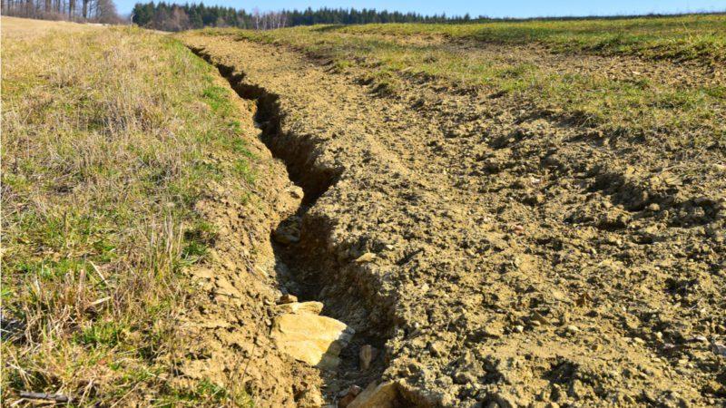 España contará en 2022 con un nuevo Plan Nacional contra la Desertificación
