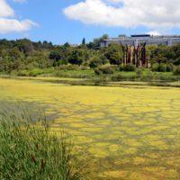 El 14% de los acuíferos europeos, contaminados por nitratos